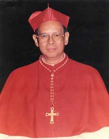 Kardinal-Julius-Darmaatmadj